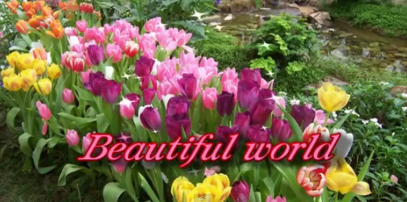 beautiful_world_flower